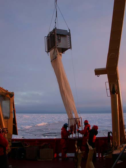 Researchers gather plankton samples from the North Water Polynya (image from Arctic Ocean Diversity project website)