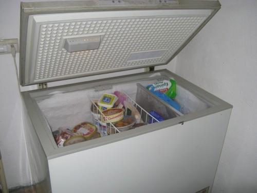 Sarah freezer 002